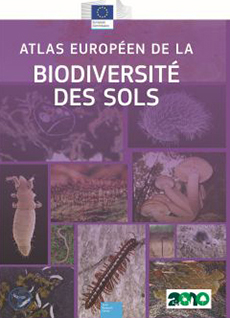 Soil Biodiversity in French